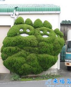 哪個園丁如此有創意,把樹木修剪成這樣啦……