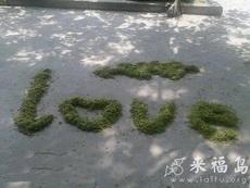 在公園看到的,公園打掃衛生的大爺好浪漫啊