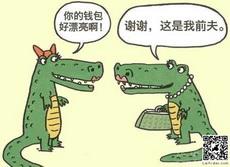 鳄鱼漂亮的钱包
