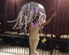 妹子的这把伞真是让人如痴如醉!