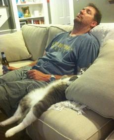 什么样的主人养什么样的猫!