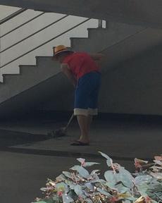 我要剧透!!!路飞最后没当上海贼王,因为他当了清洁工,有图有真相!