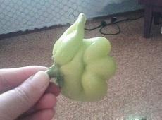 好有爱的蔬菜呀!
