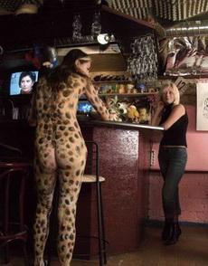 来了一只豹子