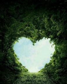 大自然还是蛮有爱的