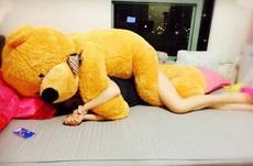 熊熊我跟你换个位置好咩?