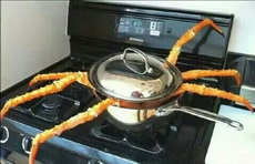 晚上吃螃蟹,谁借我个锅