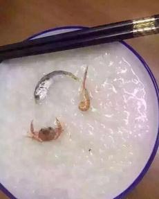 老板:來碗海鮮粥。
