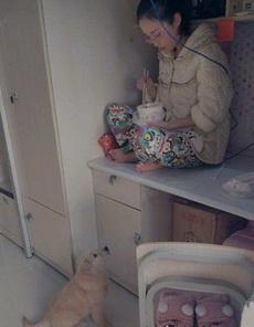 很明显狗狗的地盘比妹子地盘大多了