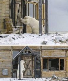 有人在家吗?明明看见有人怎么不开门?