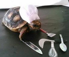 这个厨师动作有点慢啊!