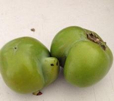 好有夫妻相的柿子