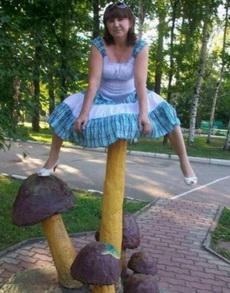 采蘑菇的姑娘