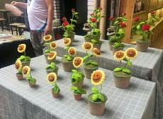 植物大战僵尸来了