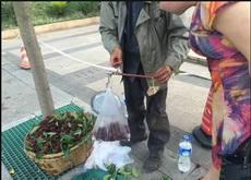 賣楊梅的老人說秤砣被搶走了,他用了個石頭替代