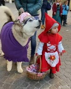 哈外婆和小红帽