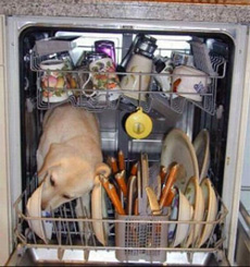 redneck dishwasher