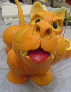 橘子皮狗狗