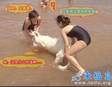 靠……什么世道啊,两美女竟然在非礼一只小狗