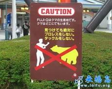 禁止和熊打架