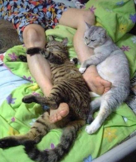 我想就这样抱着你的腿不放开爱能不能够永远单纯没有悲哀