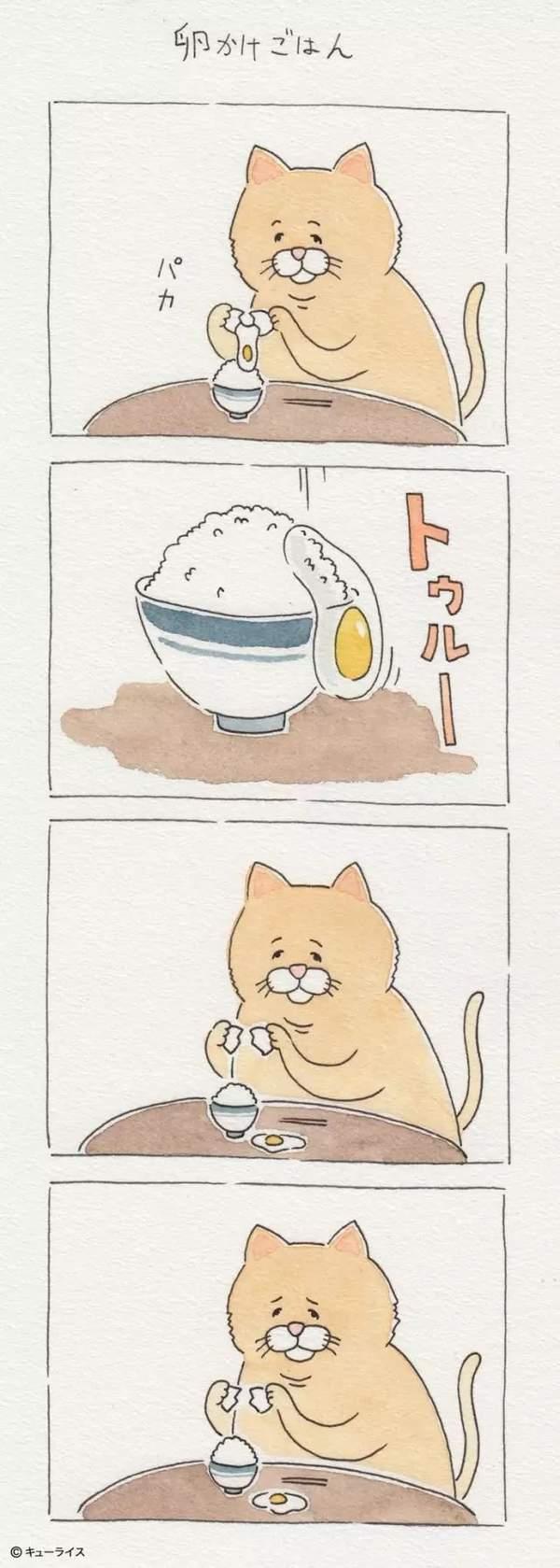 简单的打个鸡蛋都这么倒霉