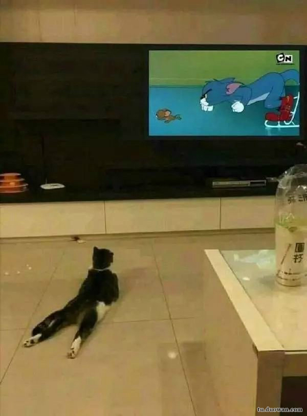 看电视走心了