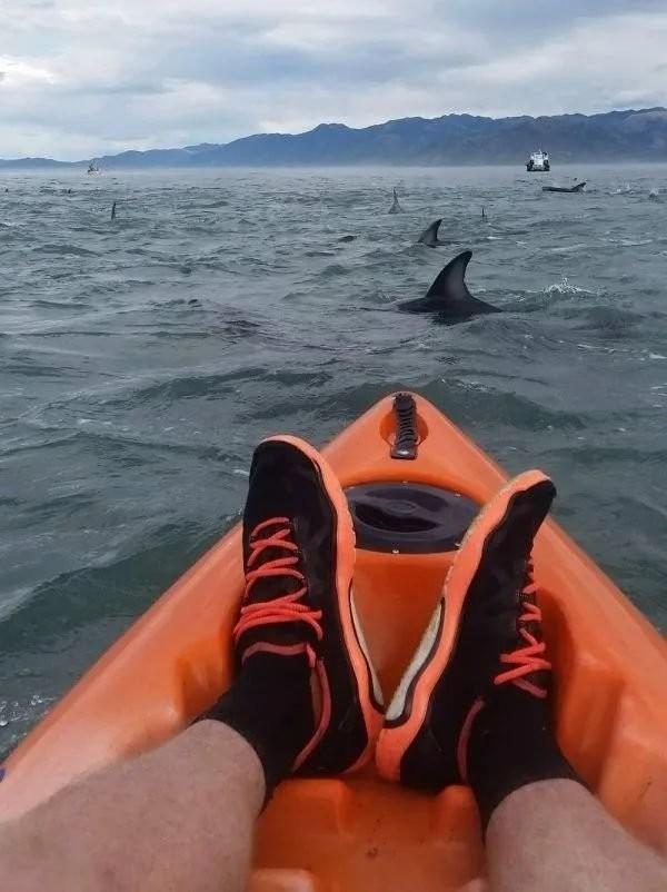 游泳的人都去哪了